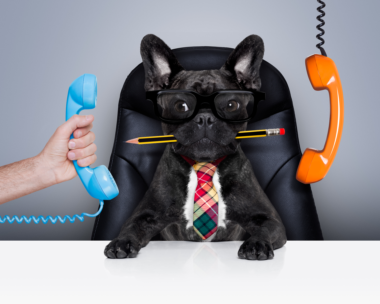 prevent call center burnout
